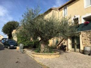 provence-october-2014-009