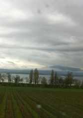 Lake Geneva from the train (crap photo)
